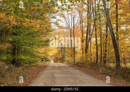 Escenas como esta son numerosas en el norte de New Hampshire uno de los 6 estados de Nueva Inglaterra. Octubre es hermoso aquí. Esta carretera conduce al centro de Effingham.
