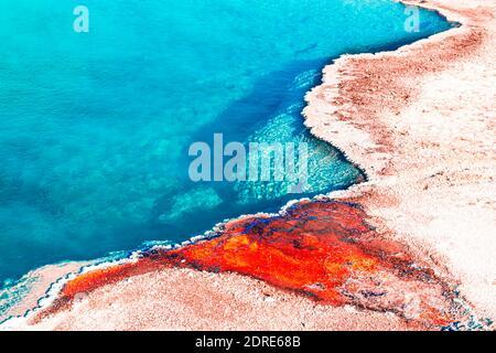 Colorido Patrón de la Primavera Turquesa, Parque Nacional Yellowstone