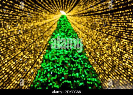 El principal árbol de Navidad de Ucrania en la plaza de Sofía en Kiev. Árbol de Navidad en Kiev