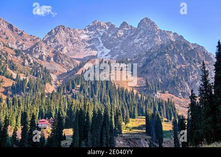 Paisaje de montaña con picos rocosos y bosque de piceas contra el cielo azul