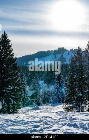 Frisch verschneite Landschaft mit Haus am Waldrand paisaje nevado con una casa de vacaciones en el borde del bosque, un día soleado Foto de stock
