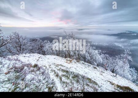 Hermosa puesta de sol en el paisaje de las montañas de invierno. Árboles de rowan congelados y brucas blancas en un día nevado. Amanecer de año Nuevo