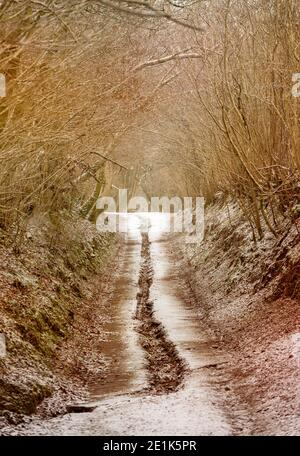 Un camino rural en invierno