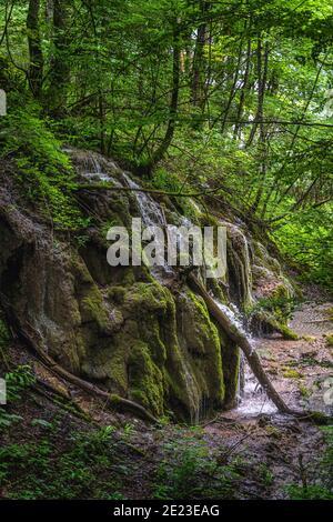 Cerca de una colina verde con cascadas y cascadas de agua en el exuberante humedal del Parque Nacional de los Lagos de Plitvice, Patrimonio de la Humanidad de la UNESCO en Croacia