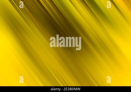 Moderno color amarillo inclinado líneas borrosas fondo abstracto