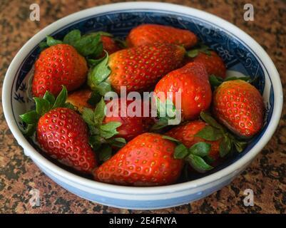 Mirando hacia abajo desde arriba a un lleno de fresas frescas en una mesa, un alimento fresco Foto de stock