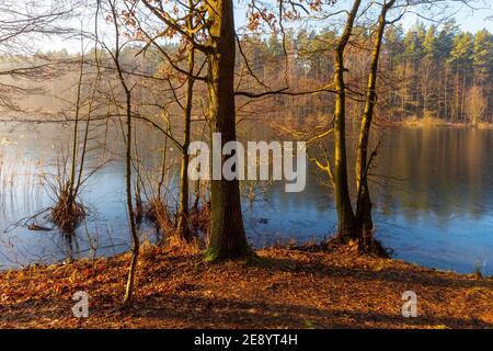 Otoño en el lago de Masuria, Polonia