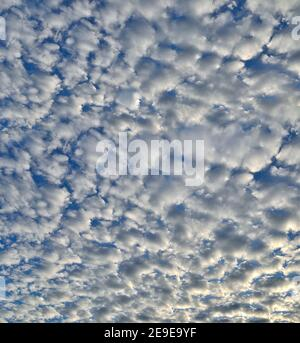 Fondo natural - nubes blancas y esponjosas estratocúmulos sobre el cielo azul. Textura de un cielo nublado inusual en días soleados. Nubes con luz solar iluminada. Metro
