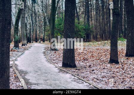 Parque de la ciudad de otoño con hojas caídas cubiertas de nieve, caminos de acera para caminar, el comienzo del invierno.