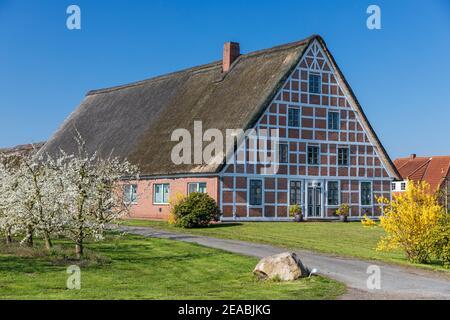 Altländer casa de campo, Hollern-Twelenfleth, Altes Land, Stade distrito, Baja Sajonia,