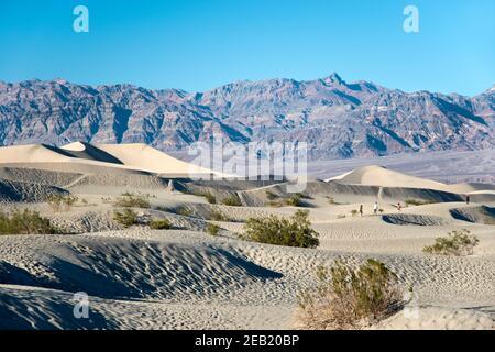 Las Dunas de arena de Mesquite Flats en el extremo norte del Parque Nacional del Valle de la muerte, California.