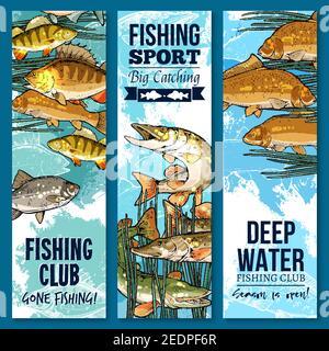 Banner de pesca con peces nadadores. Perca de río, carpa, lucio, besugo y póster cruciano de peces de agua dulce para el club deportivo de pesca o el pescador