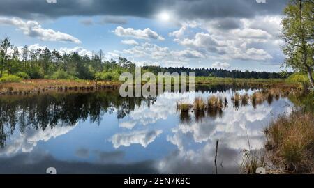 Pintoresco lago en un paisaje de páramo - Schwenninger Moos, Alemania