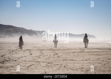 Una vista trasera de la gente cabalgando en la playa cerca de Esbjerg, Dinamarca.