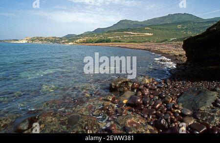Alrededores de Bosa, Cerdeña, Italia (escaneado a partir de portaobjetos de color)