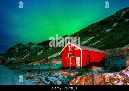 Aurora boreal o aurora boreal sobre casas rojas atípicas rorbu, Svolvaer Lofoten Noruega