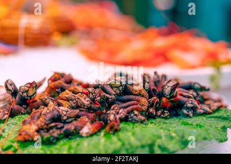 Un marisco español. Percebes de cuello de ganso en el mostrador del mercado de pescado. Colores brillantes, enfoque selectivo, bokeh.