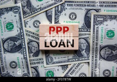 PPP, símbolo de préstamo del programa de protección de cheques de pago. Concepto palabras PPP, programa de protección de cheque de pago préstamo sobre bloques de madera en un hermoso fondo de la muñeca