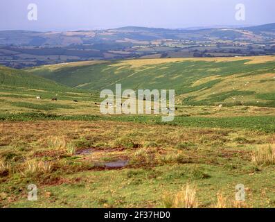 Parque nacional de Dartmoor, Devon, Inglaterra, Reino Unido