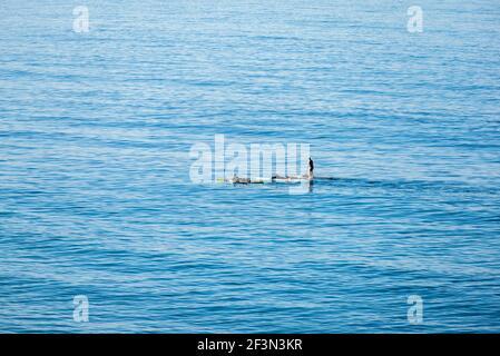 Tres personas reman en el Océano Pacífico en una mañana de invierno. Encinitas, California, Estados Unidos.