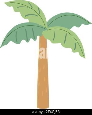 árbol de palma dibujado a mano aislado