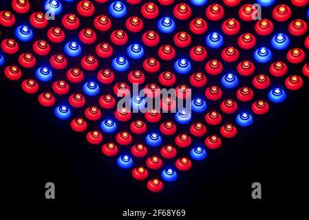 Un fondo abstracto hecho de rojo y azul LED con puntos blancos y espalda negra.