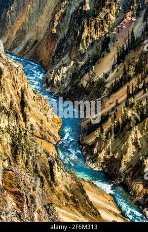 Gran Cañón del Yellowstone