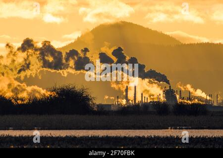 La refinería de petróleo March Point en Anacortes Washington se retroiluminó la puesta de sol a medida que el vapor sale de las pilas de escape