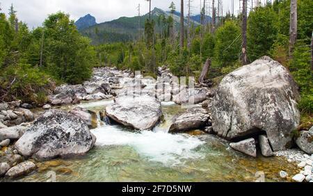 Cascadas en el arroyo Studeny potok en las altas montañas de Tatras, Carpathia, Eslovaquia