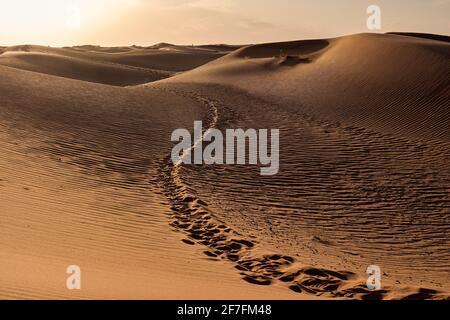 Sendero de pasos camino entre las dunas de arena del desierto del Sáhara, Merzouga, Marruecos, África del Norte, África