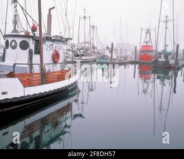 Levantar la niebla matutina revela la flota pesquera comercial en el puerto de Charleston en la costa sur de Oregón, cerca de la bahía de Coos.