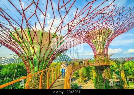 Singapur - Abril 29, 2018: Asia toma selfie turística con teléfono inteligente mientras camina sobre el puente Skyway de Supertree OCBC O Grove en jardines por la