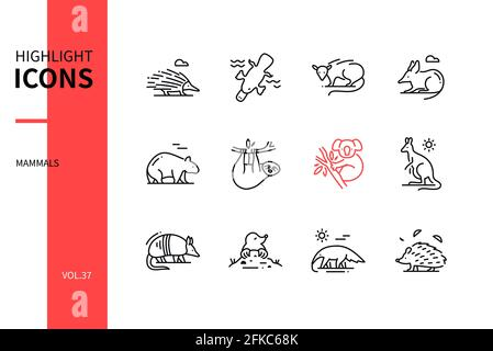 Diferentes Mamíferos - conjunto de iconos de diseño de líneas modernas. Concepto de varios animales. Imágenes en blanco y negro de un echidna, opossum, bandicoot, wombat, koal