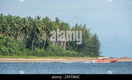 Crucero por la orilla del río Sibu Laut-Telaga Air, Matang, Sarawak, Malasia