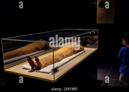 Niños mirando a la momia del rey Thutmosis II (murió 1479 a. C.), Museo Nacional de la Civilización Egipcia