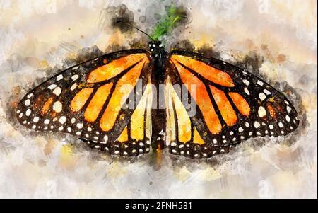 Ilustración acuarela de mariposa monarca exotical (Danaus plexippus).