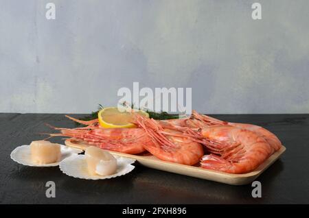 Gambas hervidas en una concha con eneldo y limón en un tazón de madera con una vieira cruda en una concha sobre un fondo de madera oscura. Enfoque selectivo.