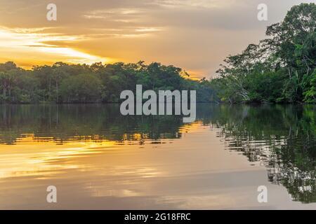 Puesta de sol de la laguna de la selva amazónica, paisaje genérico encontrado en Brasil, Bolivia, Colombia, Ecuador, Guyana Francesa, Surinam, Perú, Venezuela.