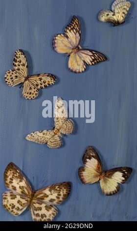 mariposas artificiales volando sobre un fondo azul