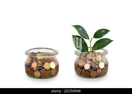 Etapa de las monedas de dinero creciente en tarro de vidrio aislado sobre blanco.