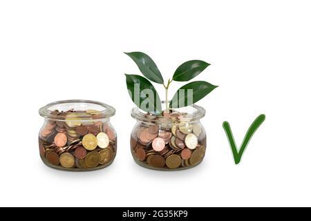 Dinero creciente y marca de verificación. Concepto de finanzas e inversión.