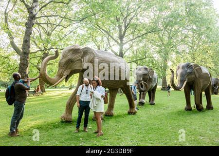 Londres, Reino Unido. 16th de junio de 2021. La gente toma fotos de esculturas de elefantes Lantana en Green Park, London.Coexistence es una instalación de arte iniciada por la Familia de Elefantes y el Elefante Real, que consiste en 100 escultores de elefantes creados por pueblos indígenas. A partir del 14th de junio de 2021 al 23rd de julio de 2021, la manada se exhibirá en diversos lugares del centro de Londres, a saber, Green Park, St. James' Park y Berkeley Square. El movimiento busca recaudar fondos para la Familia de Elefantes en su causa de proteger la vida silvestre de la destrucción humana. Crédito: SOPA Images Limited/Alamy Live News