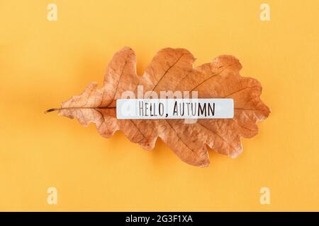 Hola texto de otoño y hoja de roble sobre fondo amarillo. Vista superior Lay plano estilo mínimo. Concepto Bienvenida Otoño. Tarjeta de felicitación.
