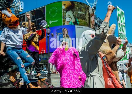 Londres, Reino Unido. 16th de junio de 2021. La campaña de otoño de 2021 de Stella McCartney, 'Nuestro tiempo ha llegado' en Piccadilly Lights, Piccadilly Circus. Para animar a la gente a firmar la petición de HSI Fur Free Britain, Stella McCartney organizó una reunión de guerrillas con embajadores de marca (aproximadamente 20 - 30) que llevaban cabezas de animales similares a las utilizadas en la campaña de otoño de 2021, pidiendo a los transeúntes que firmaran la petición de Humane Society Fur Free Britain. Crédito: Guy Bell/Alamy Live News