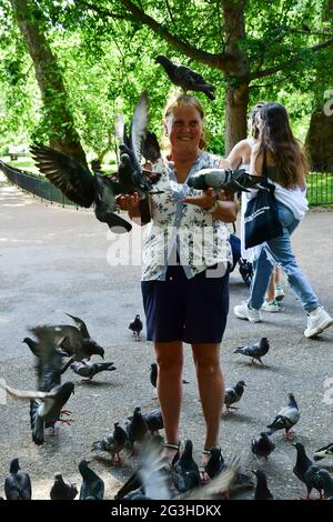Hyde Park, Londres, Reino Unido. 16th de junio de 2021. Hyde Park, Londres, Reino Unido. 16th de junio de 2021. Personas alimentando aves Parakeets y paloma en Hyde park el 16th de junio de 2021, Londres, Reino Unido Crédito: Picture Capital/Alamy Live News