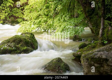 El mundo del agua en el desfiladero de Areuse