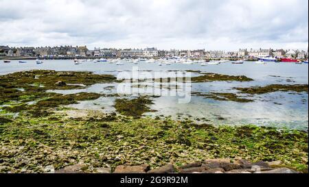 Puerto pesquero y náutico en marea baja, Barfleur, departamento de La Mancha, Cotentin, Normandía, Francia