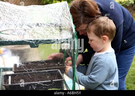 Madre ayudando a su joven hijo Coloque bandejas de semillas plantadas en un pequeño invernadero de plástico para la germinación en primavera