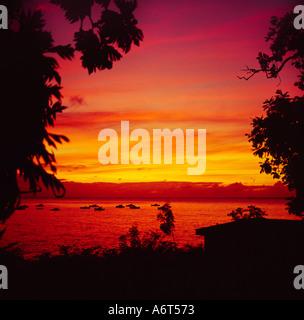 Vista costera enmarcadas por palmeras en silueta de un clásico de la magnífica puesta de sol sobre el mar Caribe Barbados El Caribe