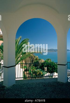 Una palmera y la línea de la costa, enmarcadas por arcos en el ...